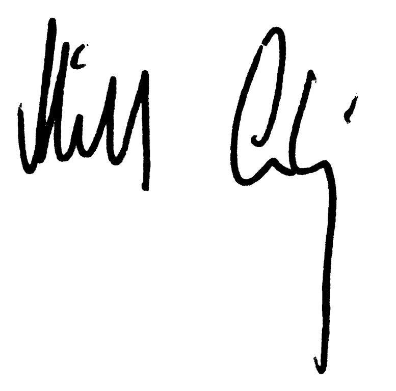 Michael Ludwig Unterschrift